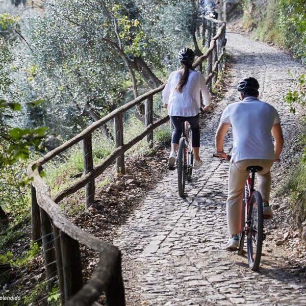 Bici escursione monte di Portofino vino