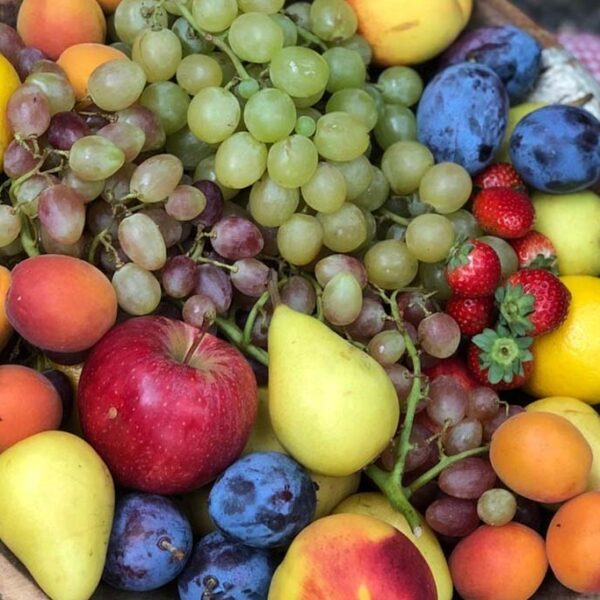 dall-orto al tavolo prodotti a kilometro zero del monte di Portofino